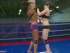 Sexy brunettes fighting