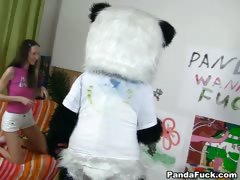 Passionate cutie fucks with big Panda