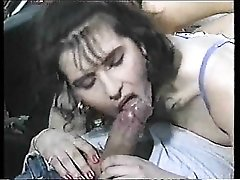 Classic screw with hairy cunt babe in lingerie