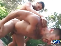 Ass Fucking In The Park